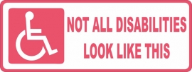 Vehicle Decal Not All Disabilities Look Like This (Pink)