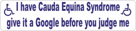 Cauda Equina Syndrome Car Parking Sticker